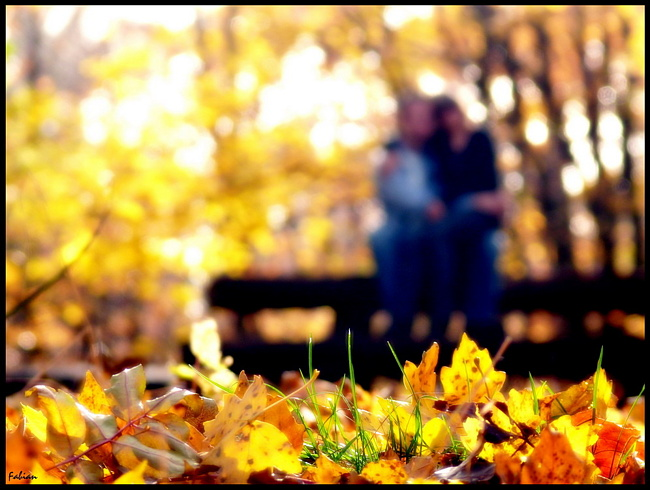 осенью становимся ближе